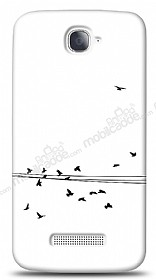 Dafoni Alcatel One Touch Pop C7 Flying Birds Kılıf