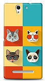 Sony Xperia C3 Four Cats Kılıf
