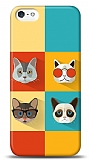 iPhone SE / 5 / 5S Four Cats Kılıf