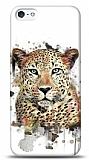 Dafoni iPhone 5 / 5S Leopard K�l�f