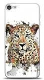 Apple iPod Touch / Touch 5 Leopard Kılıf