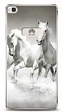 Huawei P8 Horses Kılıf