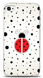 Dafoni iPhone 4 / 4S U�ur B�ce�i U� U� K�l�f
