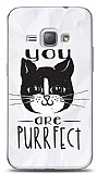 Samsung Galaxy J1 2016 You Are Purrfect Kılıf