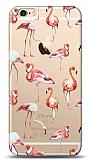 iPhone 6 / 6S Flamingo Kılıf