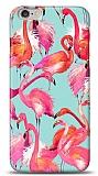iPhone 6 Plus / 6S Plus Flamingo Kılıf
