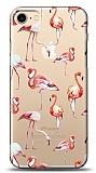 iPhone 7 / 8 Flamingo Kılıf