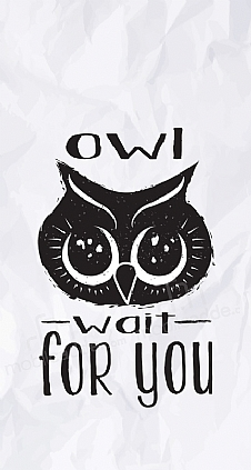 owl-wait-for-you