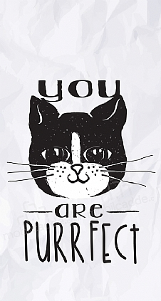 you-are-purrfect