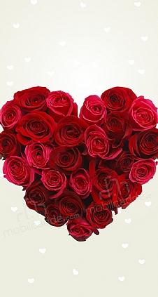 rose-love-1