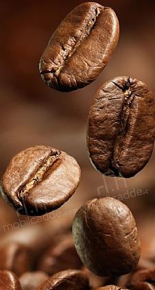 kahve-cekirdekleri