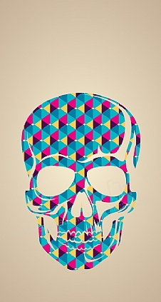 color skull resimli kılıf 220 cretsiz kargo mobilcadde com