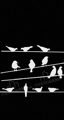 birds-black