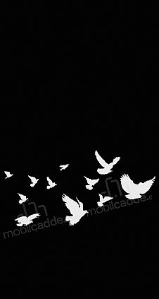 freedom-black