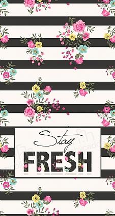 stay-fresh