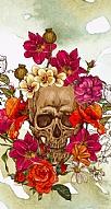 Roses Skull 4