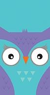 Big Face Owl