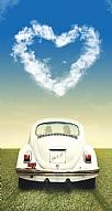 Vosvos Love