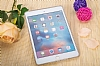 Eiroo Apple iPad mini 4 Ultra �nce �effaf Silikon K�l�f - Resim: 2