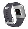 Fitbit Ionic Blue Gray & Silver Gray Akıllı Saat FB503WTGY-EU - Resim 1