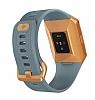 Fitbit Ionic Slate Blue & Burnt Orange Akıllı Saat FB503CPBU-EU - Resim 4
