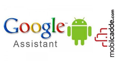 Cebinizdeki Yardımcınız, Google Asistan